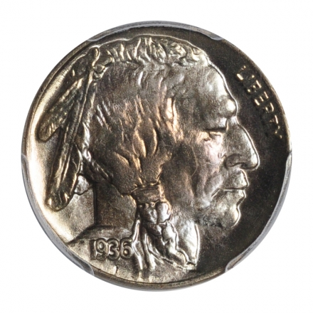 1936 5C Buffalo Nickel PCGS MS67+ #3148-34 ONLY TWO FINER!